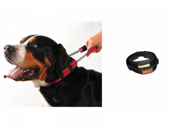 Premium Collar Halsband Korte Lijn Hond Medium 1 stuk