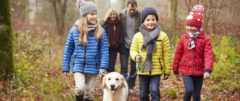 Family-Walking-Dog-Through-Winter-Woodland