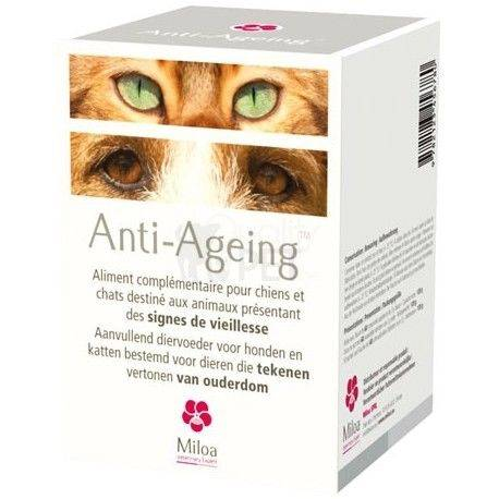 Anti Ageing Miloa Veroudering Hond Kat 60 tabletten