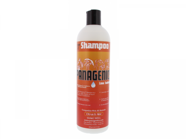 Panagenics Shampoo 480 ml