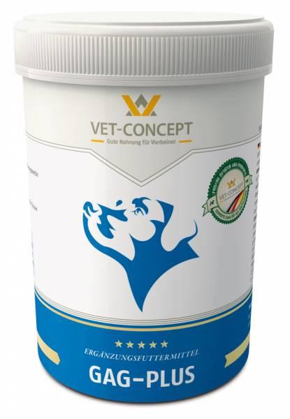 Gag Plus Vet-Concept Bewegen Hond
