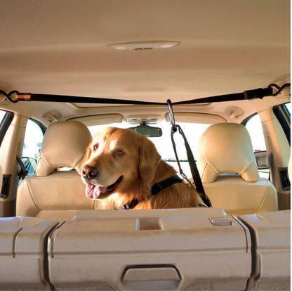 Kurgo Auto Zip Line Combo Hond