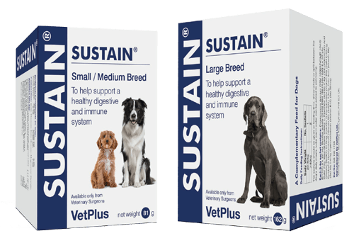 Sustain Probiotica Hond Vetplus