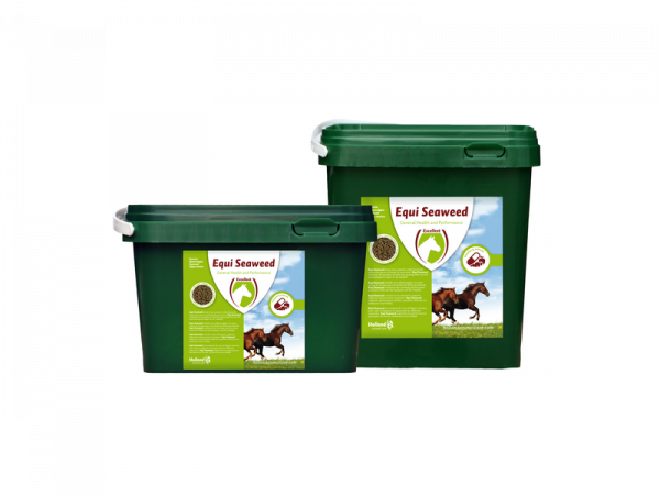 Equi Seaweed Pellets 1 kg