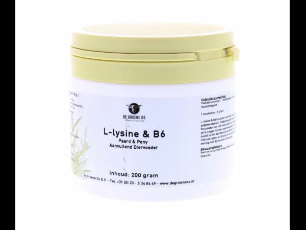 L-Lysine & Vitamine B6 Groene Os Paard pot 200 gram
