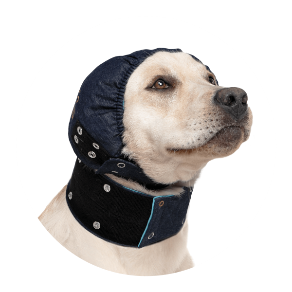 MPS-Head Cover Hond