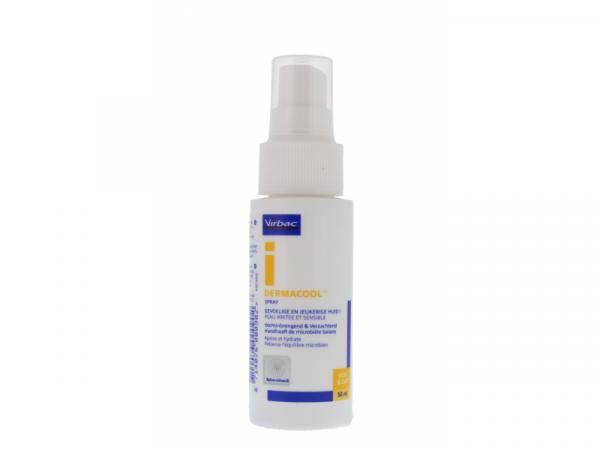Dermacool Hot Spot Spray 1 flacon
