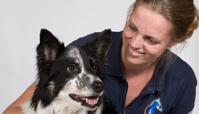 Dierfysiotherapie-hond