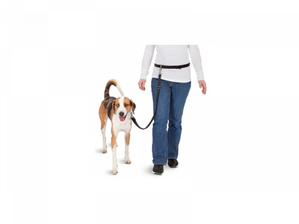 Hands Free Doggy Bike Jogger Kit Heupriem Hond