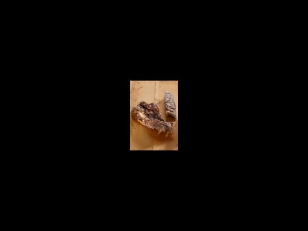 Vet-concept Runderlong Snack Hond 250 gram