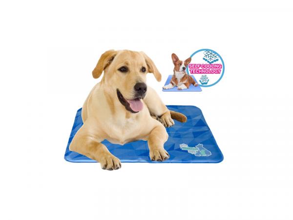 Cool Dog Mat 24/7