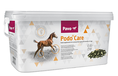 Pavo Podocare 8 kg