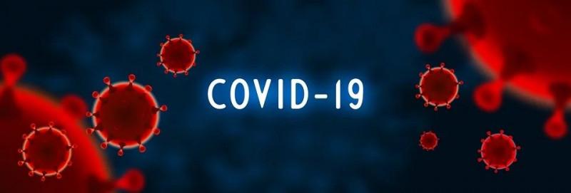 Corona-Covid19-Huisdier