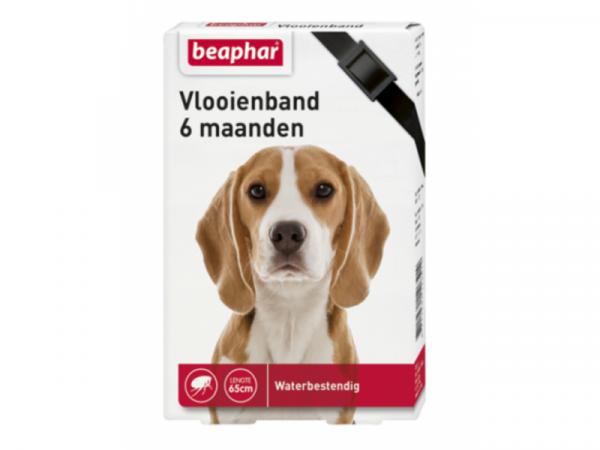 Beaphar Vlooienband Hond 6 maanden
