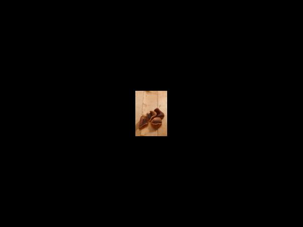 Vet-concept Vleesschijfjes Gevogelte Snack Hond 100 gram