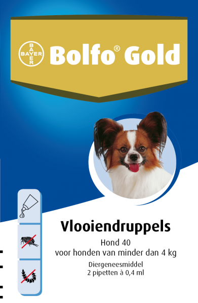 Bolfo Gold Hond