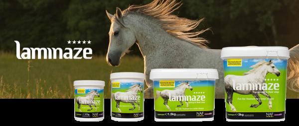 NAF Laminaze Paard