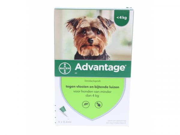 Advantage Hond
