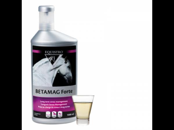 Equistro Betamag Forte 1000 ml