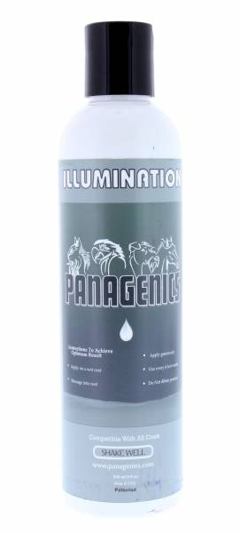 Panagenics Illumination Clarifying Shampoo 250 ml