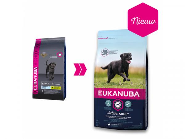 Datumvoordeel (op=op) Eukanuba Dog Active Adult Large Breed 3 kg
